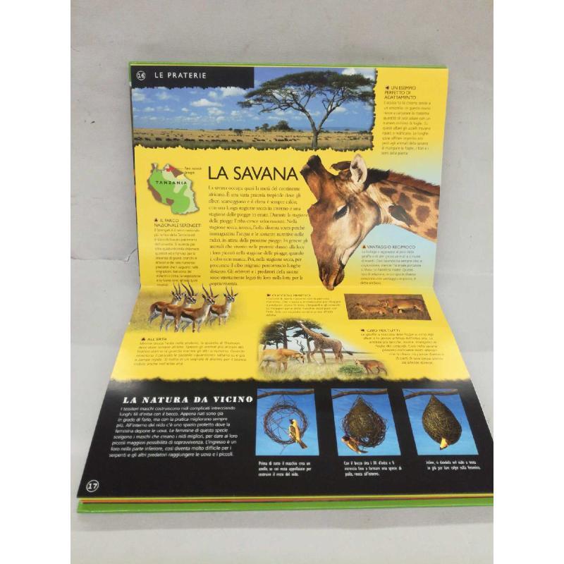 ANIMALI SELVAGGI - LIBRO DA COLORARE - DISEGNI ANI | Mercatino dell'Usato Molfetta 2