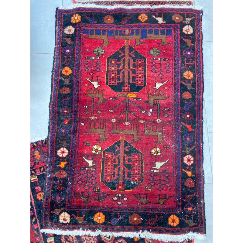 TAPPETO IRAN 150X100 | Mercatino dell'Usato San giovanni teatino 1