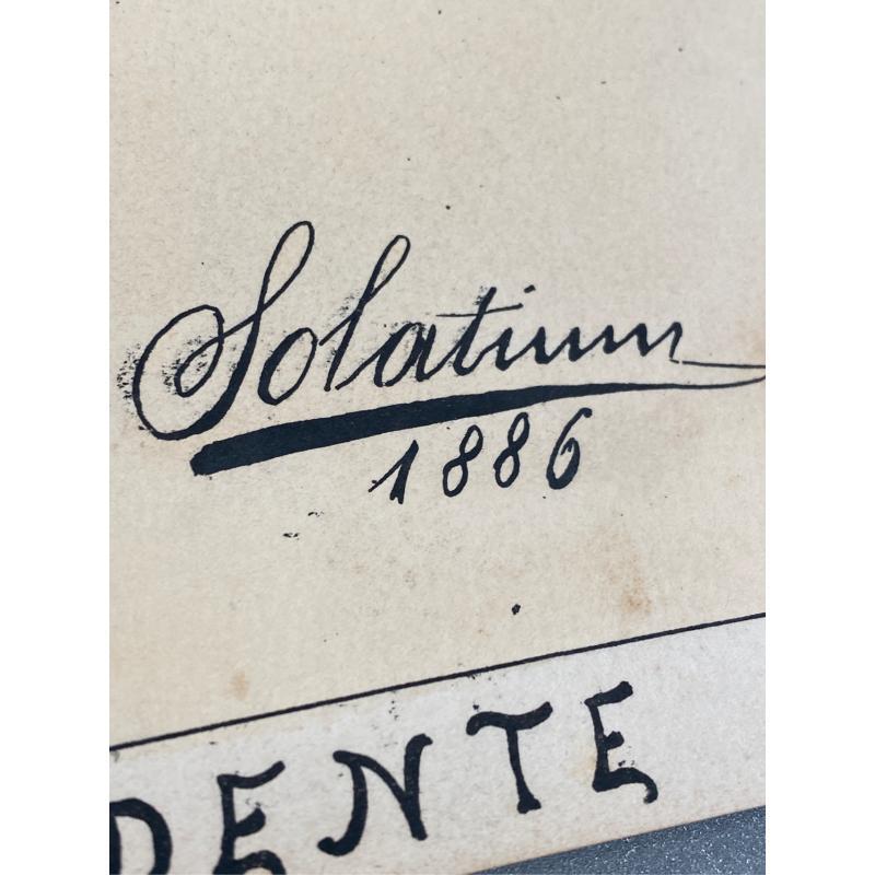 VIGNETTA SU CARTA A FIRMA SOLATIUM 1886 IL PRESIDENTE 35X24   Mercatino dell'Usato San giovanni teatino 4