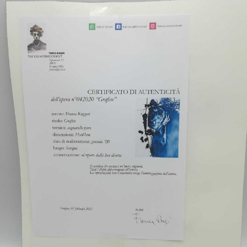 DIPINTO ACQUERELLO F.RUGGERI 31X41 GRAFICO | Mercatino dell'Usato Seregno 2