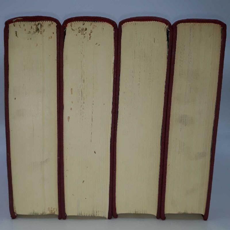 LIBRI X 4 LA SACRA BIBBIA ILLUSTRATA DA GUSTAVO DO | Mercatino dell'Usato Rimini 3