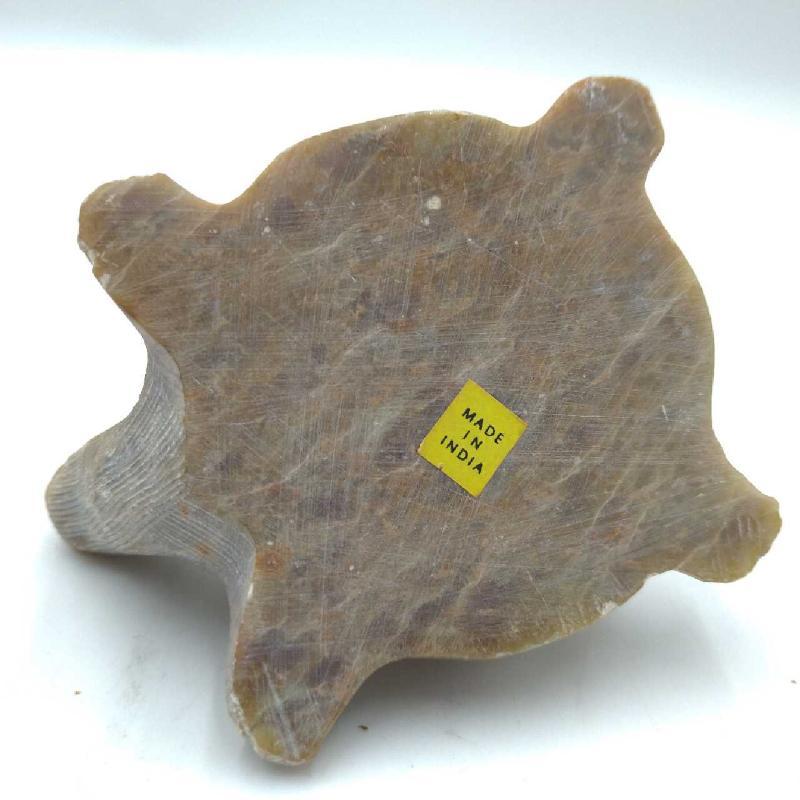 TARTARUGA SAPONARIA | Mercatino dell'Usato Moncalieri bengasi 3