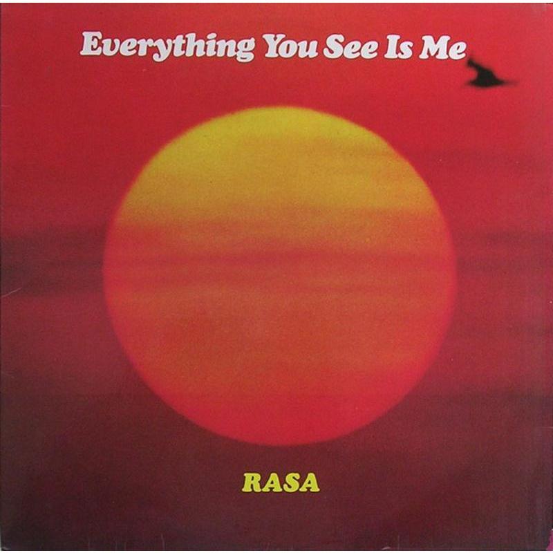 RASA (4) - EVERYTHING YOU SEE IS ME   Mercatino dell'Usato Torino via gorizia 1