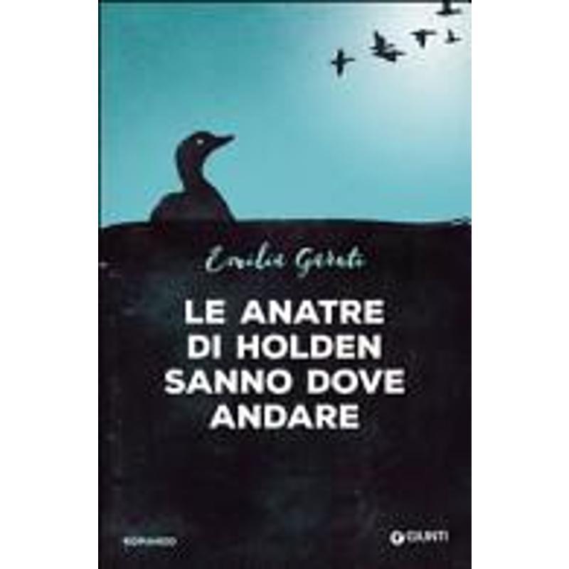 LE ANATRE DI HOLDEN SANNO DOVE ANDARE | Mercatino dell'Usato Torino via lanzo 1