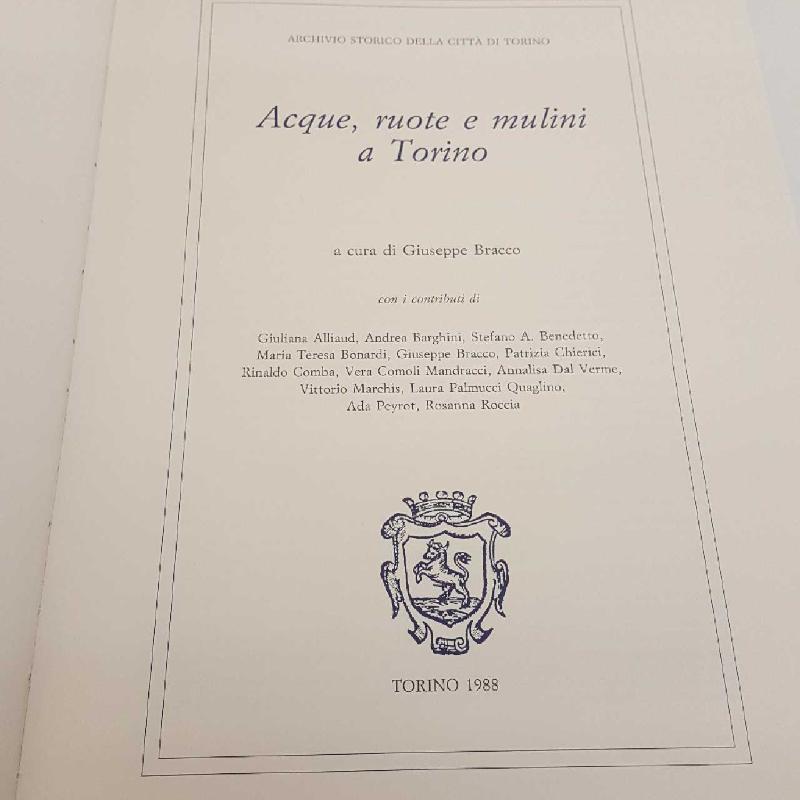 ACQUE RUOTE E MULINI A TORINO | Mercatino dell'Usato Torino mirafiori 2